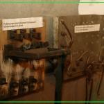 рубильник и щиток бл.ленинградского дома